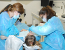 first-clinic-day-class-2012-05
