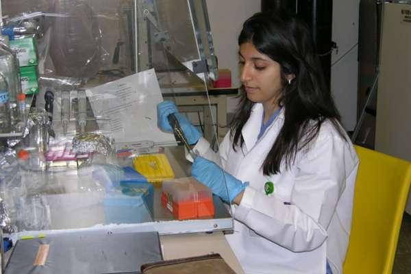 2010 Summer Research Program
