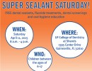 Super Sealant Saturday Flyer