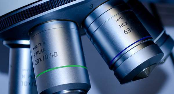 Biology Microscope