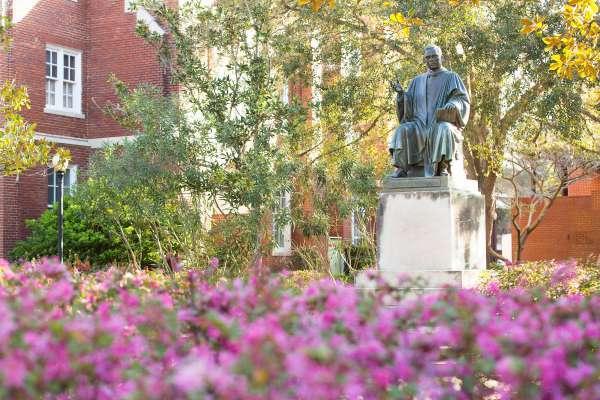 uf campus spring flowers